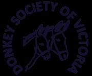 DSV Logo colur small (improved)